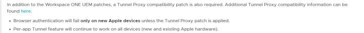 tunnelpatch2.jpg